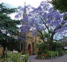 springwood-historical-society-meet-in-the-presbyterian-church-hall
